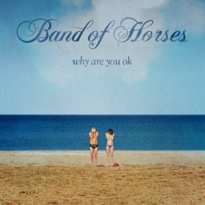 cover of Why Are You Ok