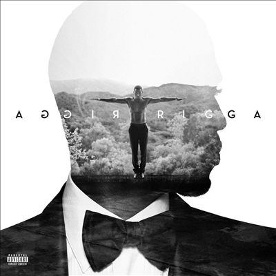Cover image for Trigga