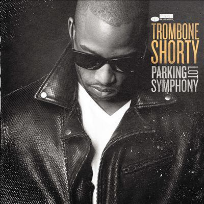 Cover image for Parking lot symphony