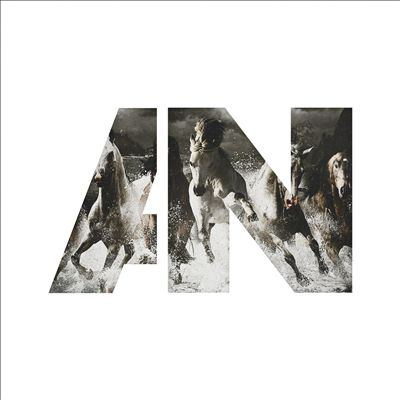Cover image for Run