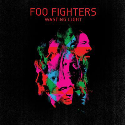 Cover image for Wasting light 