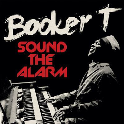 Cover image for Sound the alarm