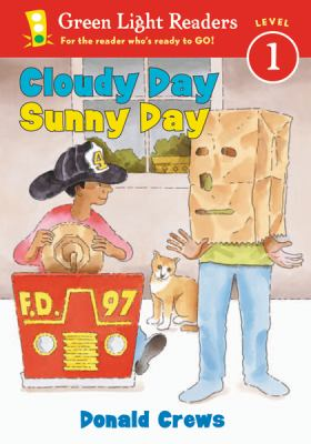 Details about Cloudy Day/Sunny Day