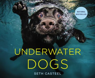 Cover image for Underwater dogs