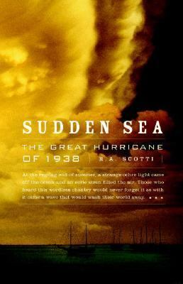 Cover image for Sudden sea