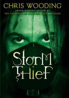 cover of Storm Thief