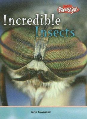 Cover image for Incredible insects 