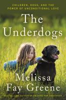 Cover art for The Underdogs