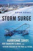 Cover art for Storm Surge