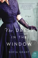 Cover art for The Dress in the Window