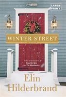 Cover art for Winter Street