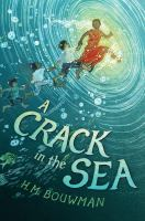 Cover art for A Crack in the Sea