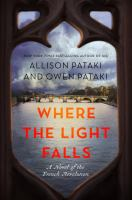 Cover art for Where the Light Falls