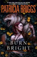 Cover art for Burn Bright
