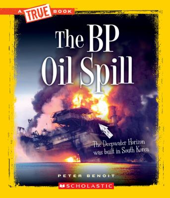 Cover image for The BP oil spill