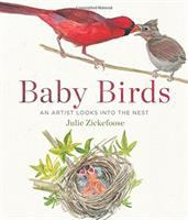 Cover art for Baby Birds