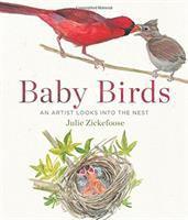 Cover art for Baby Birds