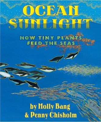 Cover image for Ocean sunlight