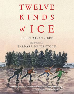 Cover image for Twelve kinds of ice