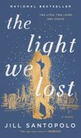 Cover art for The Light We Lost