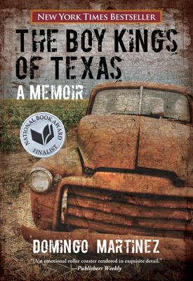 cover art for The Boy Kings of Texas