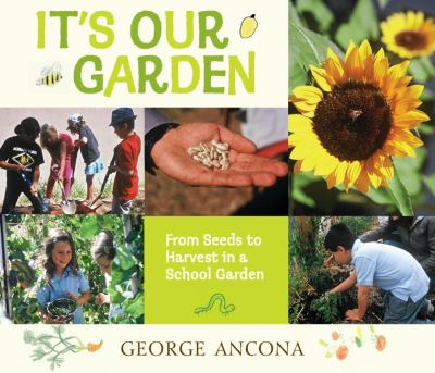 Cover image for It's our garden