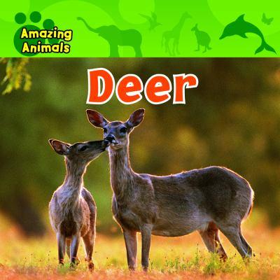 Details about Deer