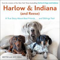 Cover of Harlow & Indiana (and Reese)