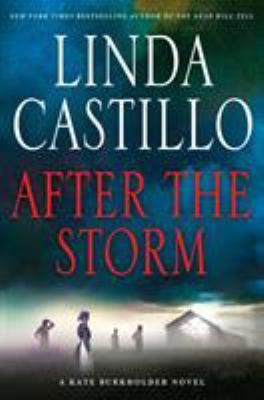 cover of After the Storm: A Kate Burkholder Novel