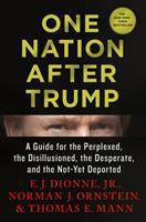 Cover art for One Nation After Trump