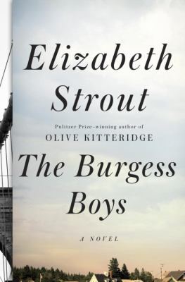 Cover image for The Burgess boys