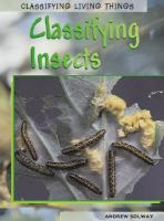Classifying insects / Andrew Solway.