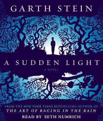 Details about A Sudden Light.