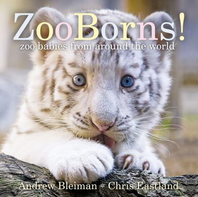 Cover image for ZooBorns! : zoo babies from around the world