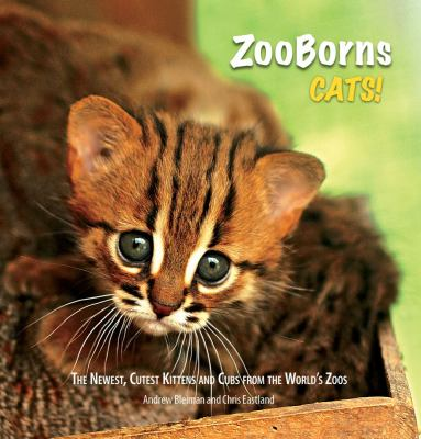 Cover image for ZooBorns cats! 