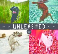 Cover art for Unleashed