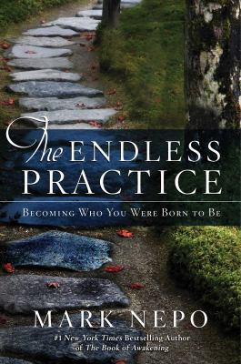 cover of The Endless Practice: Becoming Who You Were Born to Be