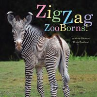 Zigzag+zooborns++zoo+baby+colors+and+patterns by Bleiman, Andrew © 2017 (Added: 1/18/18)