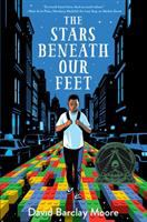 Cover art for The Stars Beneath Our Feet