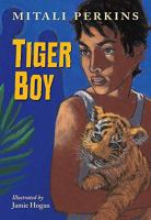 Cover art for Tiger Boy