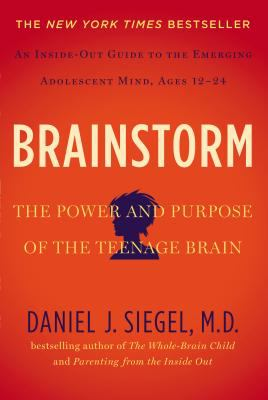 Cover image for Brainstorm