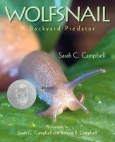 Wolfsnail: A Backyard Predator
