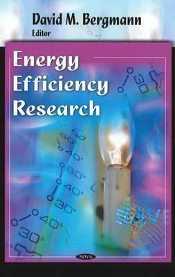 Energy Efficiency Research cover