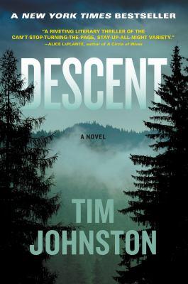 Descent : a novel