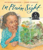 Cover art for In Plain Sight