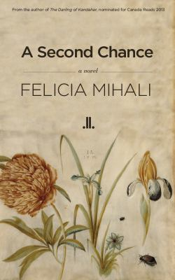 A second chance : a novel
