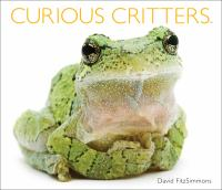 Curious Critters.