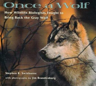 Once a wolf: how wildlife biologists fought to bring back the gray wolf by Stephen R. Swinburne, 1999
