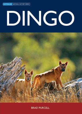 Book cover: Dingo
