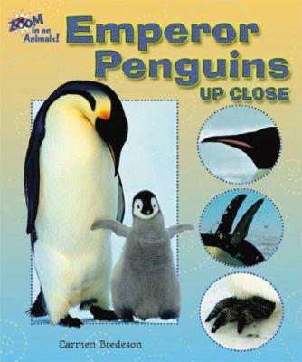 Details about Emperor Penguins Up Close